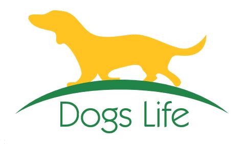Hundetrainer Ausbildung Straubing Bogen Freyung Grafenau